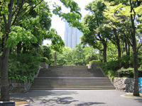 Dm050mizunohiroba