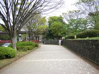 Dm028yoyogi103